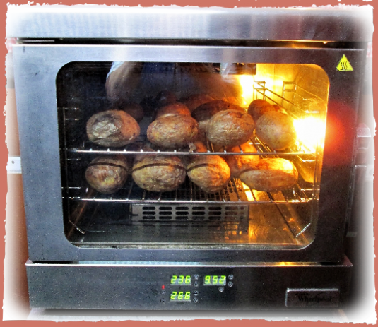 rent an electric oven to cook potatoes